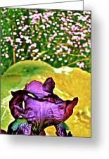 Iris 11 Greeting Card