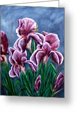 Iris Awakens Greeting Card