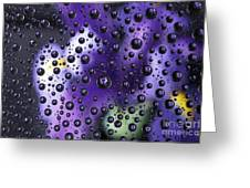Iris Bubbles Greeting Card