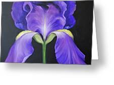 Iris Greeting Card