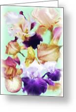 Iris Collage Greeting Card