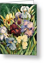 Iris Collection Greeting Card