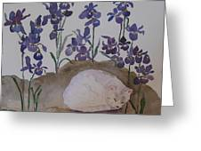 Iris Dreams Greeting Card