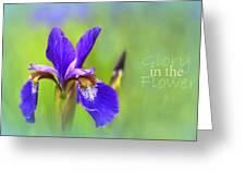 Iris Elegance Greeting Card