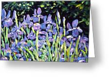 Iris En Folie Greeting Card