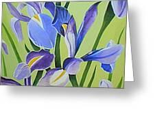 Iris Fields - Center Panel Greeting Card