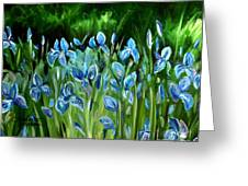 Iris Galore Greeting Card