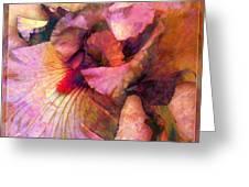Iris IIi Greeting Card