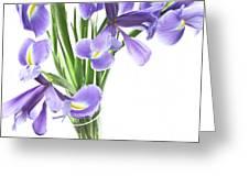 Iris In A Vase Greeting Card