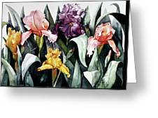 Iris Integration Greeting Card