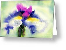 Iris Kaempheri Nikko Greeting Card