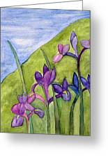 Iris Meadow Greeting Card