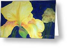 Iris Miami Beach Greeting Card