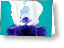 Iris Passion Greeting Card
