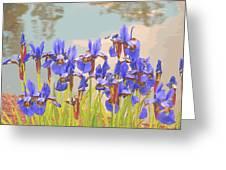 Iris Pondside 39m Greeting Card by Brian Gryphon