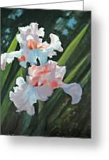Iris Pour Une Belle Femme Greeting Card