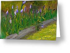 Iris Procession Greeting Card