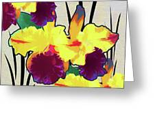 Iris Shadow Greeting Card
