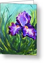 Iris Solo Greeting Card
