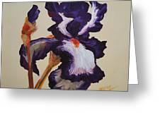 Iris Squared 2 Greeting Card