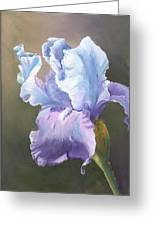 Iris Tears Greeting Card