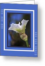 Iris White With Design Greeting Card