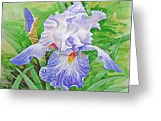 Iris.drops Of Dew .2007 Greeting Card