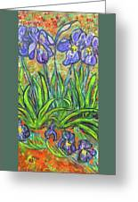 Irises In A Sunny Garden Greeting Card