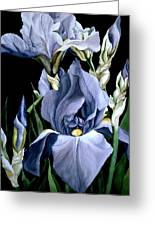Irises In Blue Greeting Card