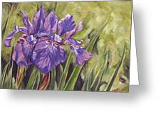 Irises Times Two Greeting Card