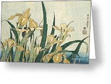 Irises With A Grasshopper Greeting Card