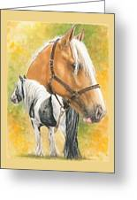 Irish Cob Greeting Card