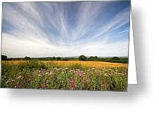 Irish Country Side Meadows Greeting Card