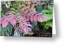 Irish Flora And Fauna 5 Greeting Card