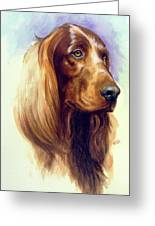 Irish Setter Greeting Card