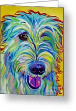 Irish Wolfhound - Angus Greeting Card