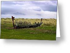 Irish Wreck Greeting Card
