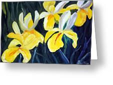 Irisis Greeting Card