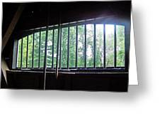 Iron Bars And Sunlight Greeting Card