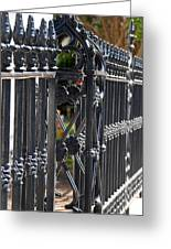 Iron Fence Greeting Card