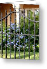 Iron Gate And Blue Flowers Greeting Card