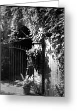 Iron Gate And Wooden Door Greeting Card