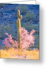 Ironwood Saguaro Dance Greeting Card