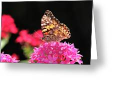Irredescent Greeting Card