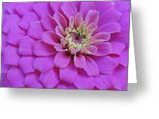 Irridescent Pink Greeting Card