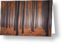 Is There Anybody In There? Greeting Card