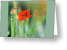 Isaiah 26 3 Of Beverly Guilliams Greeting Card