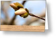 Isaiah 61  V 11 Greeting Card