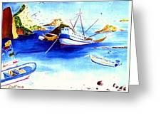 Isla Isabela Greeting Card