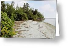 Island - Beach Greeting Card